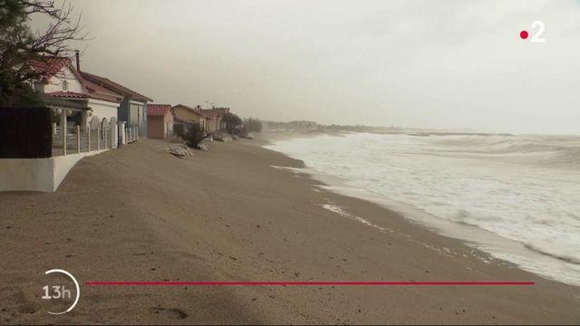 Tempête Gloria : le littoral d'Argelès-sur-Mer particulièrement exposé