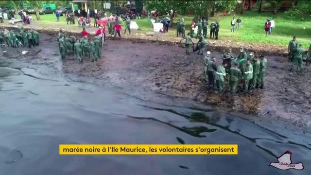 Île Maurice : la situation écologique s'aggrave à cause de la marée noire