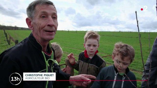 Mayenne : une famille d'agriculteurs choisit le bio de père en fils