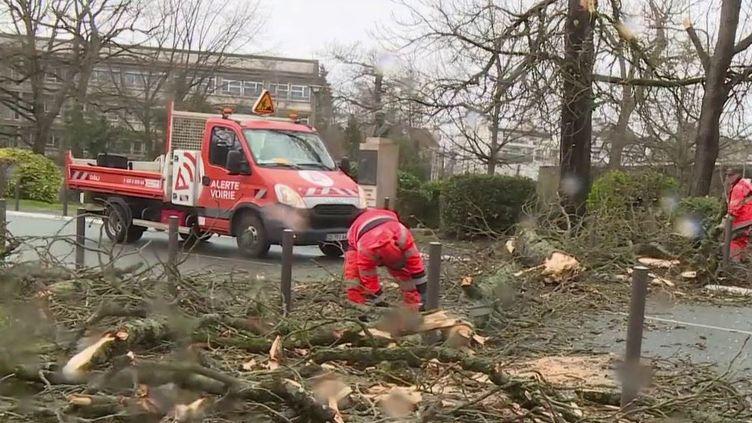 Après le passage de la tempête Myriam, deux personnes ont été blessées, dont une gravement, dans les Hautes-Pyrénées. Au plus fort de l'épisode, 60 000 foyers ont été privés d'électricité. (France 2)