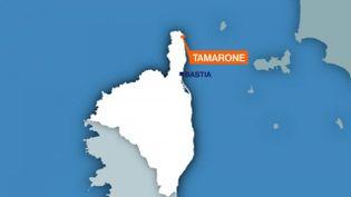 L'agression a eu lieu à Tamarone, dans la réserve naturelle du Cap Corse. (FRANCE 3 CORSE VIA STELLA)