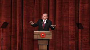 Le président Erdogan à Ankara, le 29 juillet 2016. (AHMET IZGI / ANADOLU AGENCY / AFP)