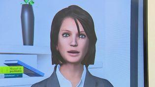 Seriez-vous prêts à consulter un médecin virtuel ? Au CHU de Bordeaux (Gironde), une expérimentation est lancée. L'objectif est de désengorger les urgences. (FRANCE 2)