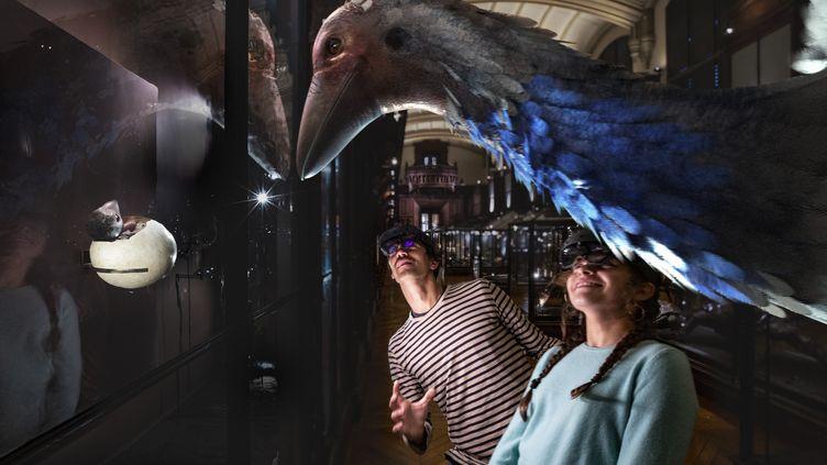 """L'exposition """"revivre"""" en réalité augmentée ressucite les espèces disparues ou en dangerau Museum d'Histoire naturelle. ici, l'Aepyornis, 12 janvier 2021. (SAOLA STUDIO / MNHN)"""