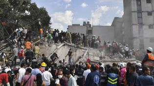 Les secours en action après le séisme qui a touché le Mexique, le 19 septembre 2017. (YURI CORTEZ / AFP)