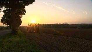 Un tracteur dans un champ du Nord-Pas-de-Calais en octobre 2013. (FRANCE 3 PAS-DE-CALAIS / FRANCETV INFO)