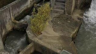 Patrimoine : les moulins à eau menacés de disparition pour le bien des poissons (France 3)