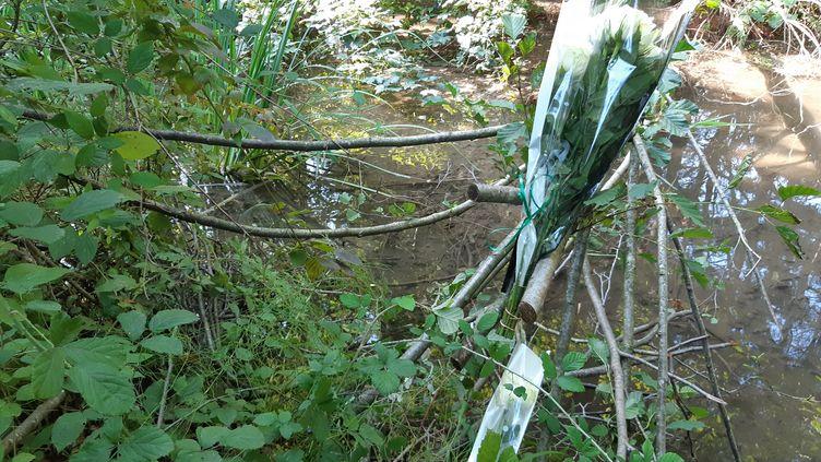 Roses blanches déposées près du lieu de découverte du corps de Victorine Dartois. (CÉLINE LOIZEAU / FRANCE-BLEU ISÈRE)