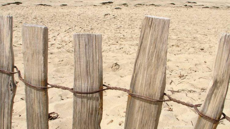 Une plage de l'ïle d'Oléron. (BATAILLE PHILIPPE / MAXPPP)
