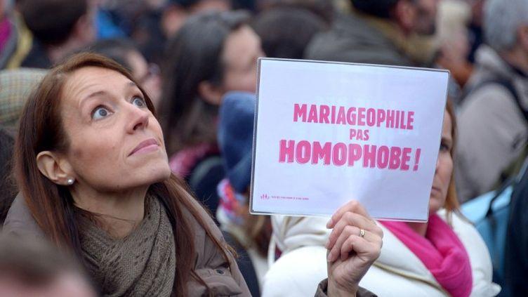 A la Manif pour tous, contre le mariage et l'adoption pour les couples du même sexe, à Paris le 13 janvier 2013. (DAMIEN MEYER / AFP)