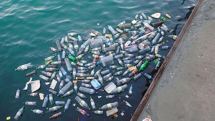 Découverte d'une enzyme artificielle qui pourrait dégrader les bouteilles en plastique (©Pixabay)