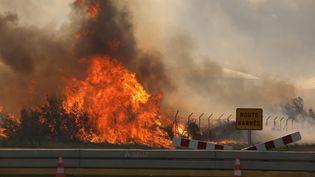 L'incendie photographié mercredi matin 10 août dans la zone de La Fossette, près de l'étang de Berre (Bouches-du-Rhône). (MAXPPP)