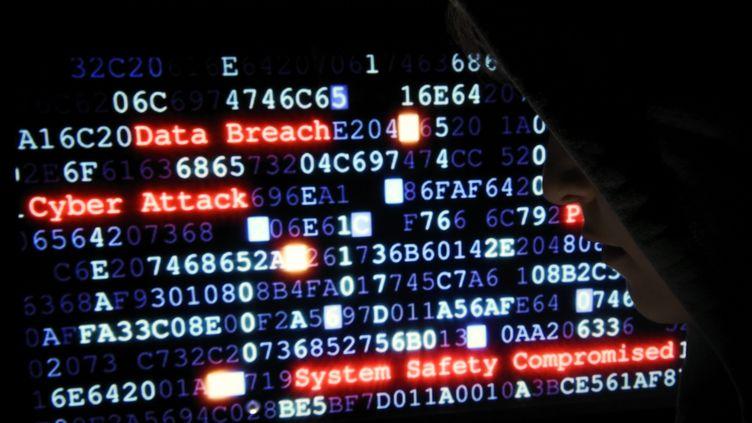 Une simulation de cyberattaque vue sur un écran d'ordinateur à Nancy (Meurthe-et-Moselle), le 10 octobre 2016. (MAXPPP)