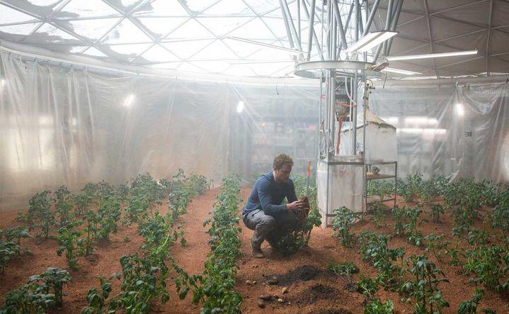 """Matt Damon doit survivre sur la planète rouge dans """"Seul sur Mars"""". (20TH CENTURY FOX)"""