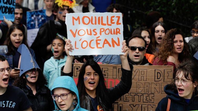 Manifestation à l'occasion de la journée mondiale des océans, à Paris, en juin 2019. (GEOFFROY VAN DER HASSELT / AFP)
