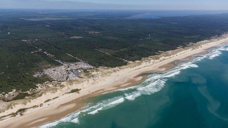 Vue aérienne de la forêt de pins et de la plage de Naujac-sur-Mer (Gironde) le 11 août 2013. (LEROY FRANCIS / HEMIS.FR / AFP)