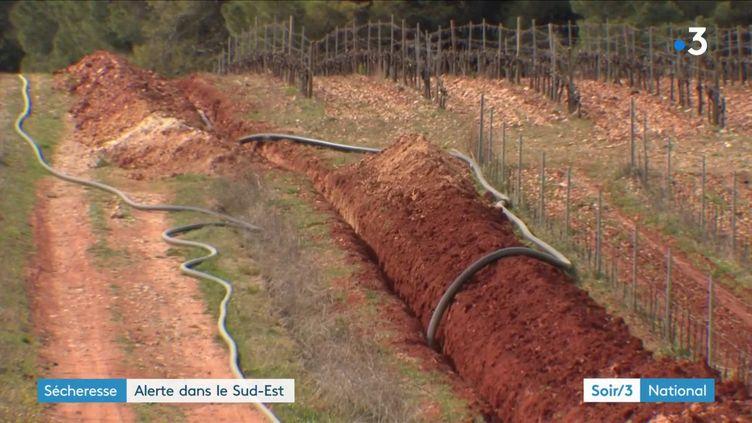 La sécheresse dans le sud de la France (France 3)