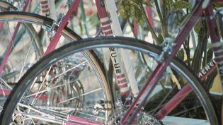 Les Cycles Mercier, fleuron de l'industrie française, quittent l'Asie et l'Europe de l'Est pour se relocaliser en France à Revin, dans les Ardennes. (France 2)