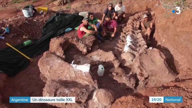 Argentine : découverte d'un fossile de dinosaure géant