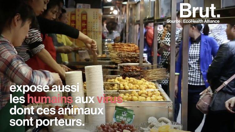 VIDEO. Coronavirus : le gouvernement chinois contraint d'agir face à la vente illégale d'animaux sauvages (BRUT)