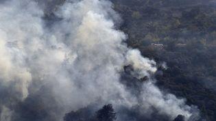 Des pompiers algériens combattent un incendie de forêt dans la région d'Ait Daoud, dans le nord de l'Algérie, le 13 août 2021. (RYAD KRAMDI / AFP)