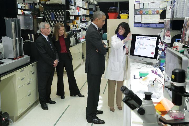 Nancy Sullivan présente ses travaux au président américain Barack Obama, le 2 décembre 2014, à Bethesda (Maryland). Derrière eux, Anthony Fauci et la secrétaire d'Etat américaine à la Santé, Sylvia Burwell. (NIH / FLICKR)
