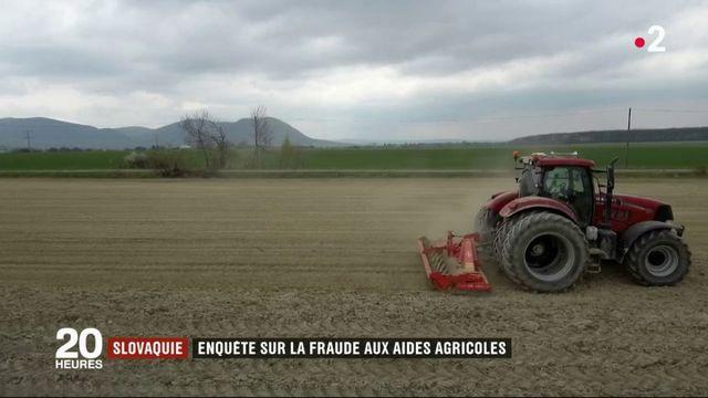 Slovaquie : des escrocs rackettent les agriculteurs