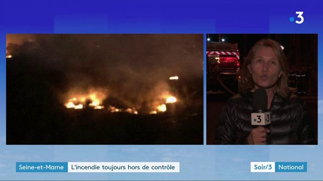 Essonne : un important feu ravage la forêt de Sénart