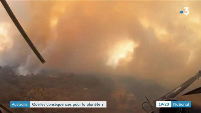 Incendies en Australie : quelles conséquences environnementales pour la planète ?