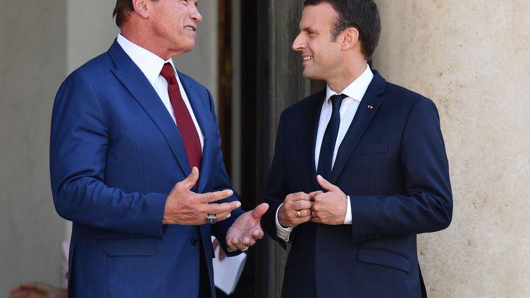 Arnold Schwarzenegger et Emmanuel Macron sur le perron de l'Elysée, à Paris, vendredi 23 juin 2017. (MUSTAFA YALCIN / ANADOLU AGENCY / AFP)