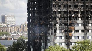 La tour Grenfell a été ravagée par un incendie à Londres (Royaume-Uni), le 15 juin 2017. (TOLGA AKMEN / AFP)