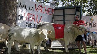 Un fermier à côté de sa vache place de la Nation à Paris. (? JACKY NAEGELEN / REUTERS / X00198)