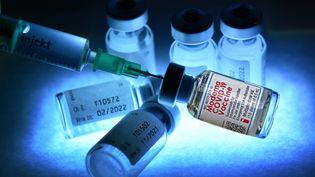 Le vaccin Moderna n'est pas encore autorisé dans l'Union européenne. (FRANK HOERMANN / SVEN SIMON / AFP)