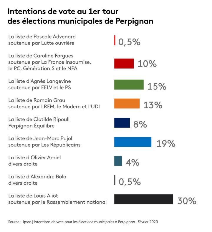 Intentions de vote au 1er tour des élections municipales de Perpignan (IPSOS POUR FRANCEINFO / STÉPHANIE BERLU)