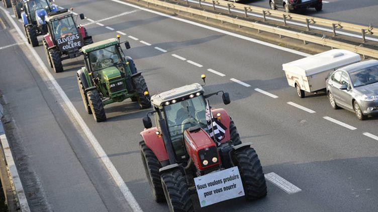 (Illustration mobilisation des agriculteurs en Bretagne © Maxppp)