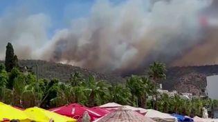 Incendies : les flammes font rage en Grèce et en Turquie (France 3)