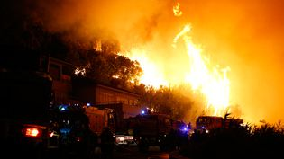 Des sapeurs-pompiers luttent contre les flammes à Biguglia (Haute-Corse), le 24 juillet 2017. (PASCAL POCHARD-CASABIANCA / AFP)