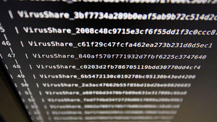 """Un chercheur de l'Institut national de la rechercheen informatique et en automatique (Inria)montre des informations indiquant la présence d'un """"rançongiciel"""" sur un écran d'ordinateur, le 3 novembre 2016 à Rennes (Ille-et-Vilaine). (DAMIEN MEYER / AFP)"""