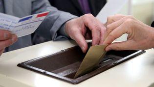Dans un bureau de vote duPontet (Vaucluse), le 22 mars 2015. (MAXPPP)