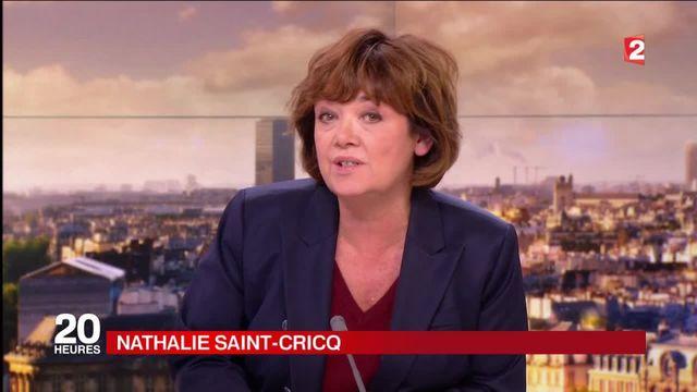 Notre-Dame-des-Landes : affrontements entre Ségolène Royal et Manuel Valls