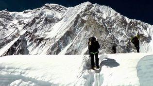 Originaire de Mayenne, Luc Boisnard est un chef d'entreprise engagé dans la protection de l'environnement. Avec l'aide de sherpas, il a décidé de nettoyer l'Himalaya. (france 3)