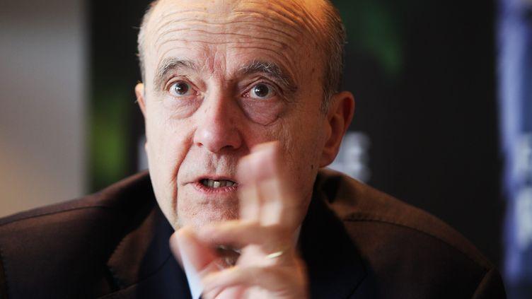 Alain Juppé le 25 février 2015 à Bordeaux (Gironde) ( MAXPPP)