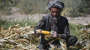 Un homme en Afghanistan, le 24 octobre 2021. (JAVED TANVEER / AFP)