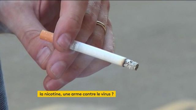 La nicotine empêcherait-elle le coronavirus d'infecter les fumeurs ?