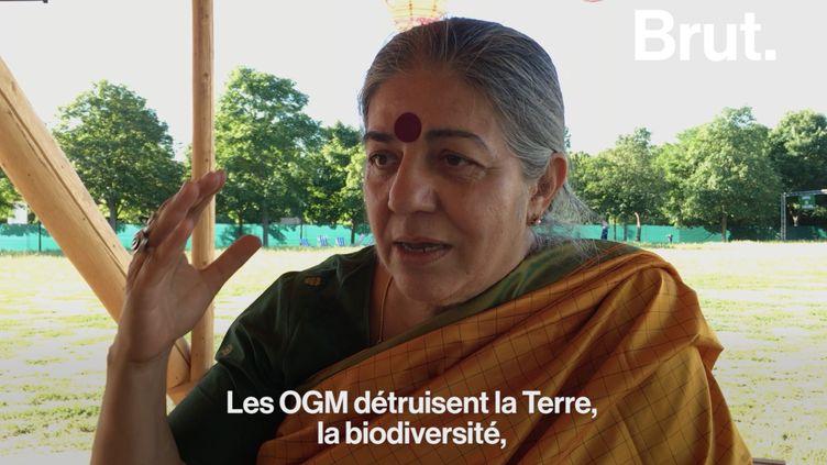 Lamilitante écologiste indienne Vandana Shiva (Brut)