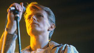 David Bowie en concert à Francfort le 14 mai 1978  (Hans H. Kirmer / DPA / AFP)
