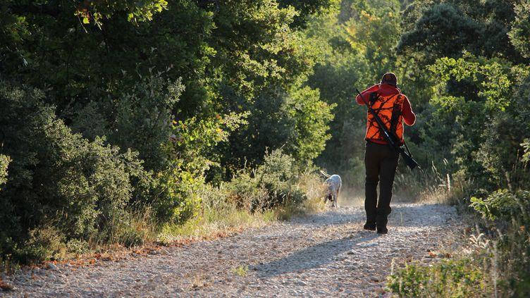Un chasseur et son chien lors de l'ouverture de la chasse, en septembre2019. Photo d'ullustration. (JADE PEYCHIERAS / FRANCE-BLEU VAUCLUSE)
