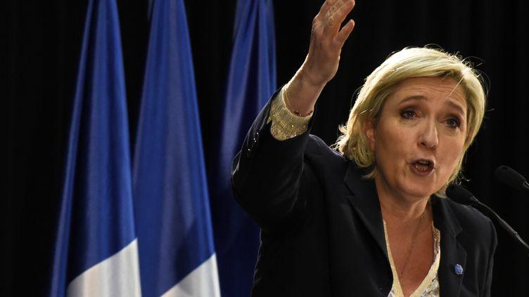 La candidate Front national à la présidentielle, Marine Le Pen, s'exprime lors d'un meeting à Pierrelatte (Drôme), le 24 février 2017. (JEAN-PHILIPPE KSIAZEK / AFP)