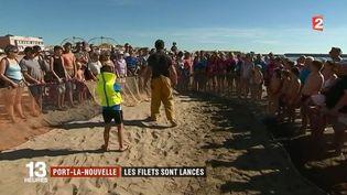 À Port-la-Nouvelle (Aude), une centaine de touristes est venue participer à l'expérience. Et si la pêche à la traîne est loin d'être productive ce matin-là, le public découvre les difficultés du métier de pêcheur. (FRANCE 2)