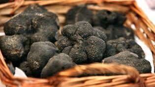 Des truffes noires, à Sarlat (Périgord). (PATRICK BERNARD / AFP)